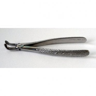 AM Dental Forceps No.79 - Each