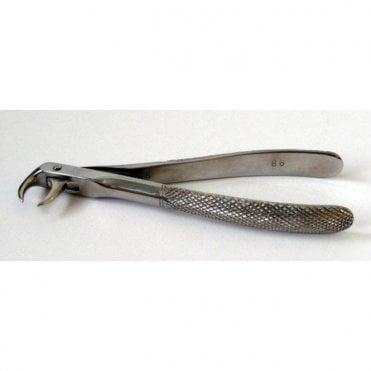 AM Dental Forceps No.86 - Each