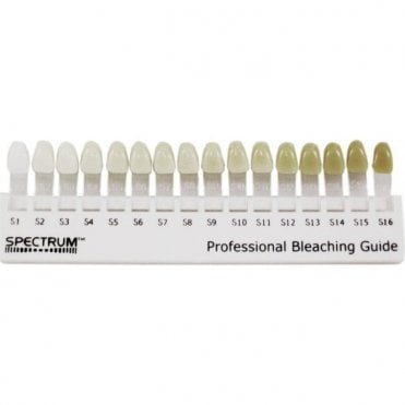 Dentsply Spectrum Shade Guide (60605230) - Each