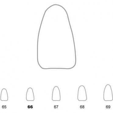 UnoDent Temporary Crowns Lower Incisors 66 (TCS066) - Pack5
