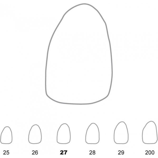 UnoDent Temporary Crowns Upper Lateral Incisors Left 27