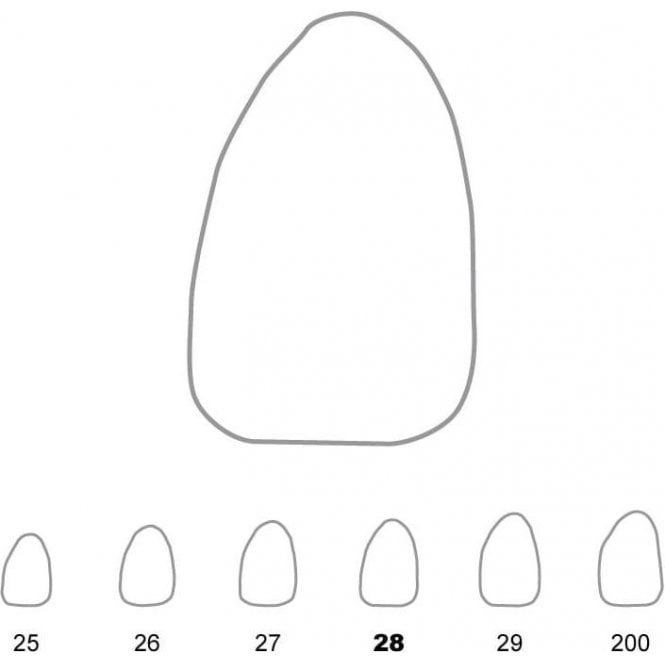 UnoDent Temporary Crowns Upper Lateral Incisors Left 28