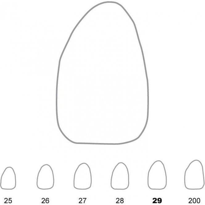 UnoDent Temporary Crowns Upper Lateral Incisors Left 29