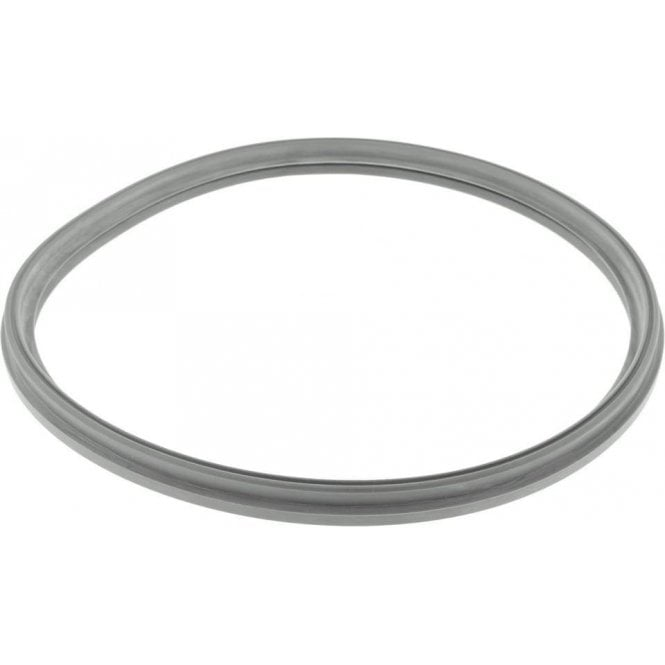 W&H Lisa 500 Autoclave Door Seal (F460504X) - Each