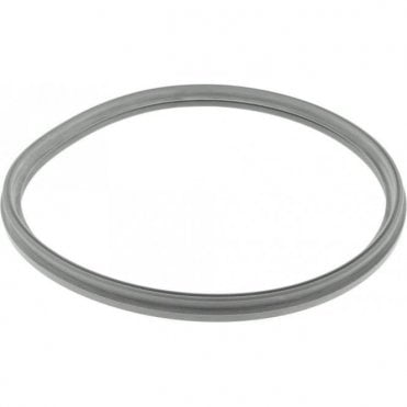 W&H W&H Lisa 500 Autoclave Door Seal (F460504X) - Each